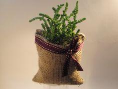 Suculenta en Maceta de Arpillera Ideas Para Fiestas, Cactus Y Suculentas, Wicker Baskets, Burlap, Planter Pots, Reusable Tote Bags, Plants, Sachets, Presents