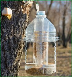 Кормушка для птиц из пластиковой бутылки Garden Bird Feeders, Bird House Feeder, Diy Bird Feeder, Diy Home Crafts, Diy Arts And Crafts, Homemade Bird Feeders, Backyard Fireplace, Plastic Bottle Crafts, Clinic Design