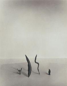Shoji Ueda, Little Drifters, 1950