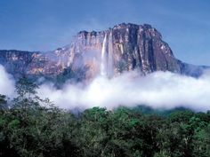 Auyantepui - tallest waterfall in the world! (almost 3,200 ft)