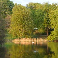 hannehappel #Frederiksborg Slotspark aftenstemning#