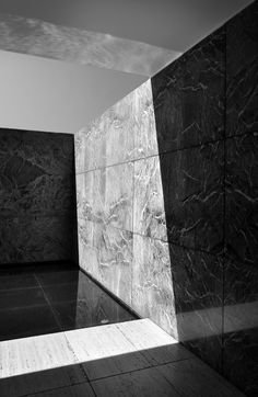 Snake Ranch | as119: Barcelona Pavilion / Mies van der Rohe by...