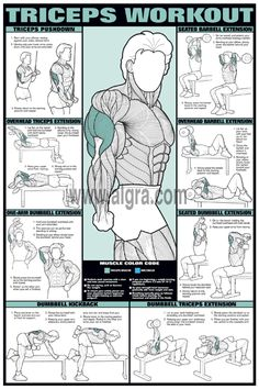 Chart that shows exercises for the triceps...think about how you can modify in chair, floor, and standing positions to best meet the needs of your body...