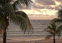 Popular Things to see and do While in Jamaica | Discover Your Honeymoon
