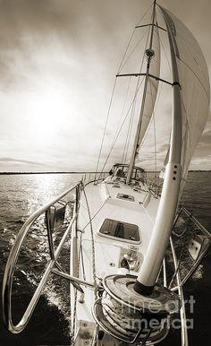 Beneteau 49 on the Charleston Harbor. Photo By Dustin K Ryan