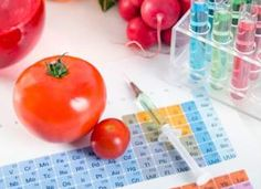 Buy Tomatoes, syringe, test tubes in laboratory on periodic table. GMO conception by piotr-adamowicz on PhotoDune. Tomatoes, syringe, test tubes in laboratory on periodic table. Genetically Modified Food, Microbiology, Biotechnology, Test Tubes, Periodic Table, Conception, Dna, Tomatoes, Stock Photos