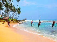 Billedresultat for Negombo, sri lanka