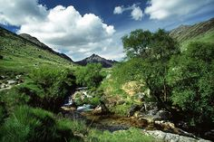 So green here at Glen Rosa, on the Isle of Arran...............