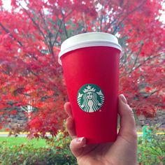 First red cup of the season for me! Thx @starbucks  ____________________________________  #starbucks #king5fall #redcup #autumn #issaquah #sammamish #Seattle #upperleftusa #tea #coffee #fall #leaves #fallcolors #fallfoilage