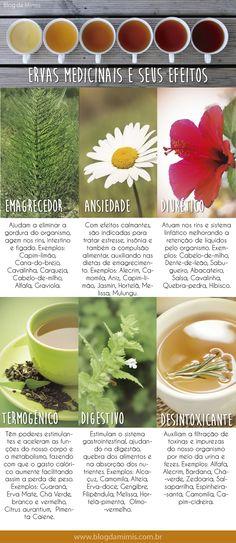 Efeitos de algumas ervas medicinais.  http://blogdamimis.com.br/2014/06/30/o-poder-das-ervas-medicinais/?utm_source=facebook&utm_medium=link-texto-foto&utm_content=o-poder-das-ervas-medicinais&utm_campaign=visita