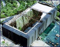 Jurassic Park scaffolding