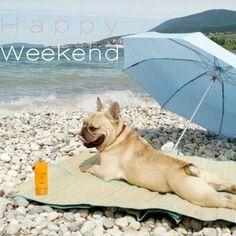 Happy Weekend!                                                                                                                                                                                 More