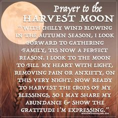 harvest-moon-prayer