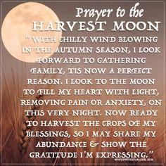 harvest-moon-prayer