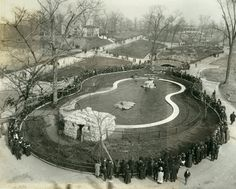 Crowd around seal pond, St. Louis Zoo. (1918)