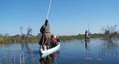 #Viaje a #BOTSWANA. Viaja al Delta del Okavango en un #viaje de #aventura con #Trekking y #Aventura #Viajes.   http://www.trekkingyaventura.com/africa/viajes-a-Botswana/botswana-delta-okavango.asp