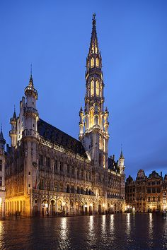Brussels Town Hall by david.bank (www.david-bank.com) on Flickr. The Town Hall (French: Hôtel de Ville), of the City of Brussels is a Gothic building from the Middle Ages. It is located on the famous Grand Place in Brussels, Belgium.