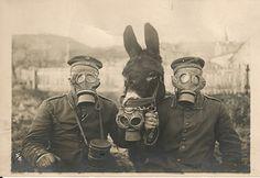 Dois soldados alemães e seu burro