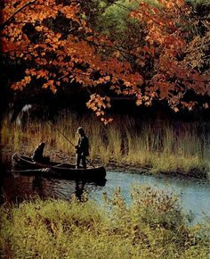 My brother and I would take out the canoe when we were younger to catch bullfrogs :)