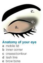 eyeshadow simple and tips on pinterest : eye makeup diagram - findchart.co