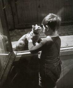 Willy Ronis Le chat de la concierge Paris, 1947 FromParis entre chats