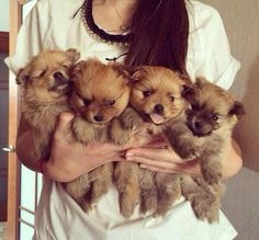 I want them all!!