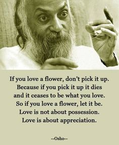 If you love a flower, don't pick it up. because if you pick it up it dies and it ceases to be what you love.  So, if you see a flower, let it be.  Love is not about possession.  Love is about appreciation.