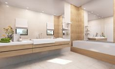 3D Bathroom Visualizations. Bathroom Lighting, Bathtub, 3d, Moana, Mirror, Architecture, Bathrooms, Interiors, Furniture