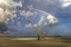 folly beach,sc | Folly Beach County Park – Folly Beach, South Carolina