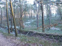 2013-01-13  Winter in de Diepe Hel