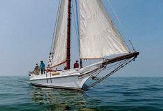 Skipjack-Wilma-Lee-400px