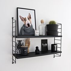 How cute is he?  .  «Bill The Bull Terrier» 21x30 | Poster by www.peopleoftomorrow.no | Picture from our Instagram: @peopleoftomorrow_  _  #shelfie #poster #postersonline #wallart #wallartdecor #interiordetails #interiorforinspo #nordicinterior #nordichome #scandinavianinterior #whiteinterior #shelfiedecor #stringpocketshelf #bullterrier