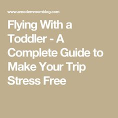 Flying With a Toddler - A Complete Guide to Make Your Trip Stress Free