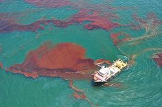 NOAA response and restoration to the Deepwater Horizon oil spill in the Gulf of Mexico.