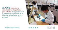 El INIFAP es el primer centro público de investigación mexicano certificado por la calidad en la gestión de sus proyectos. SAGARPA SAGARPAMX #MéxicoAgroPotencia