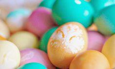 Iby Lippold Haushaltstipps : Eierfärben - Blütenpracht auf's Ei gebracht