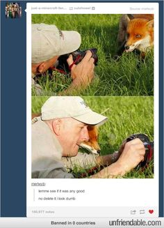 I just love this. And it looks like the fox is sticking it's tongue out in the top pic. Soo sweet