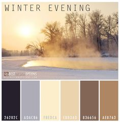Winter Color Palettes for Design Inspiration