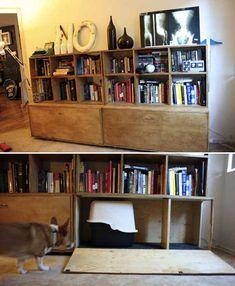 Hidden Bookshelf Litter Box