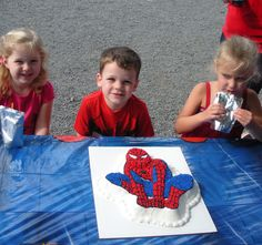 Spiderman cake was a hit with the birthday boy. Wilton Cakes, Boy Birthday, Spiderman, Boys, Spider Man, Baby Boys, Sons, Guy Birthday