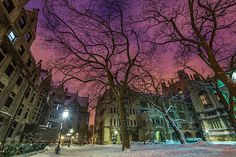 This past weekend I met again with a good friend to visit another familiar location: University of Chicago.  It was here that started a more serious interest in photography, and I was fortunate enough to learn from my friend (and still am on any occasion I can).  We awoke early to catch my favorite light...that deep blue and purple that is short lived before the night becomes the day.  The frigid morning didn't disappoint and it felt great to walk along these snow-filled paths again.     Night eternal In the valley of dreams It is said not to exist but I have seen If you come with me we could stay forever Into the endless that you cannot leave