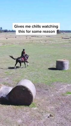 Cross country training with my horse Horses Jumping Videos, Funny Horse Videos, Funny Horse Memes, Show Horses, Cute Horses, Horse Love, Cute Horse Pictures, Most Beautiful Horses, Horse World