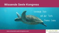 Jörg Fuhrmann - Wissende Seele Online Kongress (Interviewausschnitt)