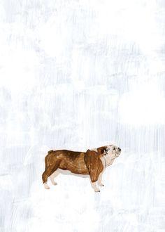 Bulldog in the snow by Fumi Koike
