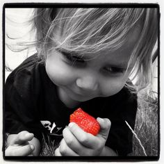 Claire J: Red is the colour of summer, Poppy's, flowers, and all u can eat strawberry picking!