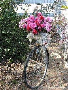 Bike with basket...