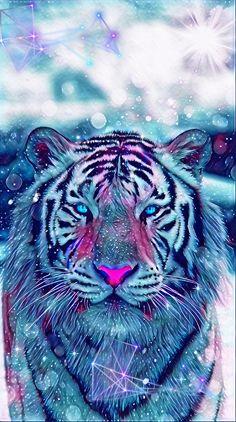 Cute Wild Animals, Pretty Animals, Cute Cartoon Animals, Anime Animals, Animals Beautiful, Cute Galaxy Wallpaper, Cute Cat Wallpaper, Cute Wallpaper Backgrounds, Animal Wallpaper