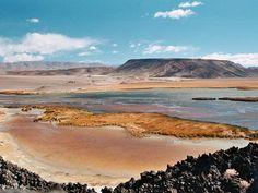 Laguna de Antofagasta - Catamarca - Argentina