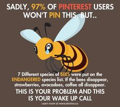 Please help save the bees!!!!!! Pin on every board!!!!