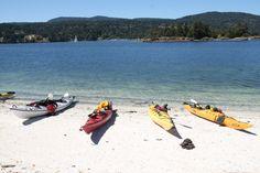 kayaking with island Escapades Playground, Surfboard, Kayaking, Family Travel, Salt, Island, Adventure, Chocolate, Spring